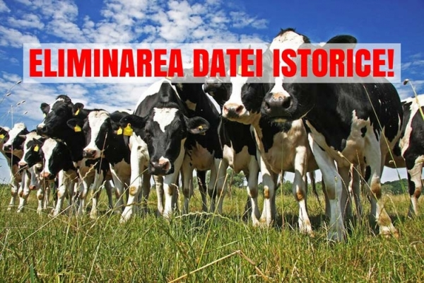 DATA DE REFERINȚĂ SUBVENȚIE BOVINE ANUL 2018!