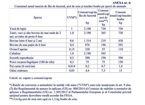 ordin-madr-anexa-6_b