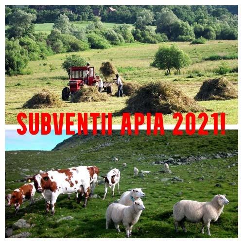 subventii-apia-2021_b