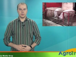 Jurnal de stiri AGROINFO TV - 17.10.2014